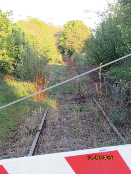 ballingrane railway track