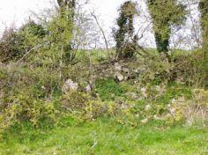 ballymorisheen mass rock remains